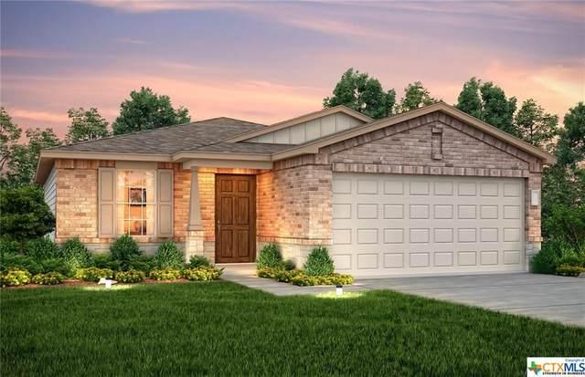 436 Holly Bush, New Braunfels, TX 78130 (MLS #422541) :: Kopecky Group at RE/MAX Land & Homes