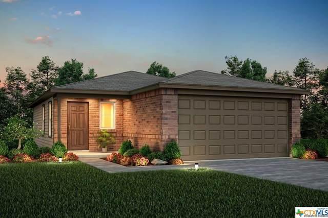 341 Autumn Blaze, New Braunfels, TX 78130 (MLS #422551) :: RE/MAX Family
