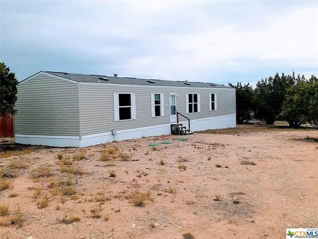131 Julia Drive, Copperas Cove, TX 76522 (MLS #422634) :: The Real Estate Home Team