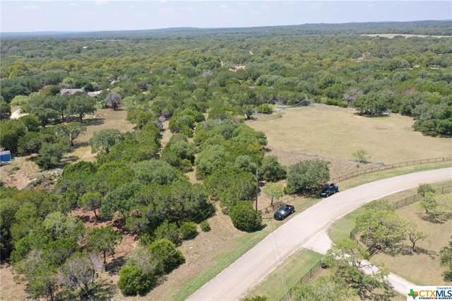 384 Georg Oaks, Bulverde, TX 78163 (MLS #422698) :: HergGroup San Antonio Team
