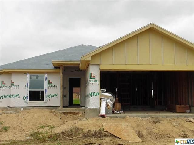 1502 Black Kettle, Temple, TX 76502 (MLS #422734) :: Vista Real Estate