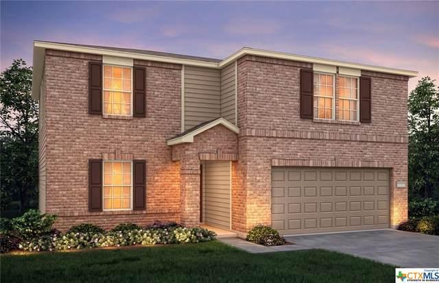 433 Nova Zembla, New Braunfels, TX 78130 (MLS #422775) :: Kopecky Group at RE/MAX Land & Homes