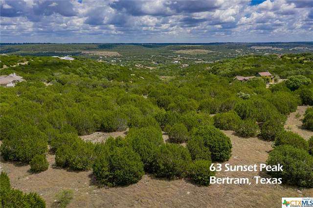 63 Sunset Peak, OTHER, TX 78605 (#422808) :: First Texas Brokerage Company