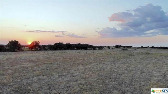 TBD - Lot 7 County Road 224, Florence, TX 76527 (MLS #422915) :: The Zaplac Group