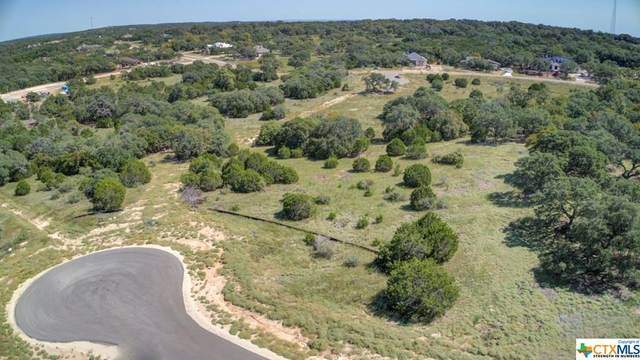 369 Butternut Way, New Braunfels, TX 78132 (MLS #423192) :: Kopecky Group at RE/MAX Land & Homes