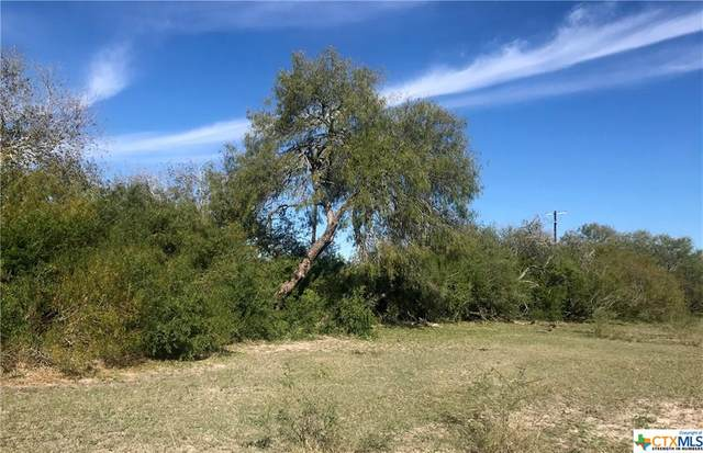 Lot 5 Hwy 281 So. Ben Bolt End Of Aransas Pass, Alice, TX 78332 (MLS #423193) :: Kopecky Group at RE/MAX Land & Homes