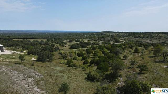 29 Axis Circle, Fredericksburg, TX 78624 (MLS #423201) :: Kopecky Group at RE/MAX Land & Homes