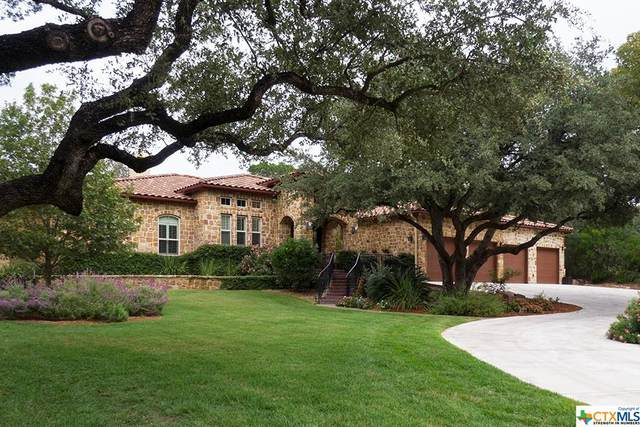 507 Lakeview Boulevard, New Braunfels, TX 78130 (MLS #423321) :: The Zaplac Group