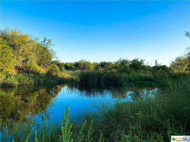 TBD County Rd 146, Gatesville, TX 76528 (MLS #423430) :: RE/MAX Family