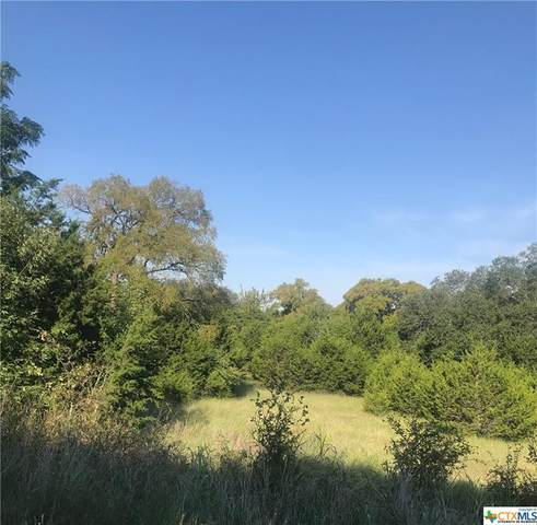 Lot 1 Skyline, Gatesville, TX 76528 (MLS #423455) :: The Real Estate Home Team