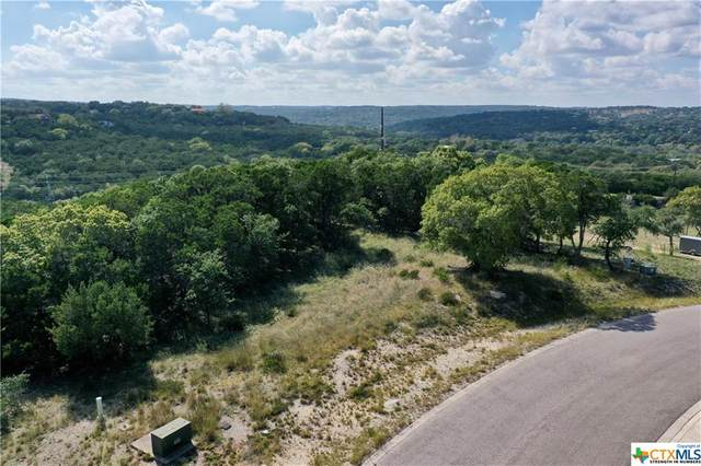 619 Angelica Vista, Canyon Lake, TX 78133 (MLS #423593) :: Brautigan Realty