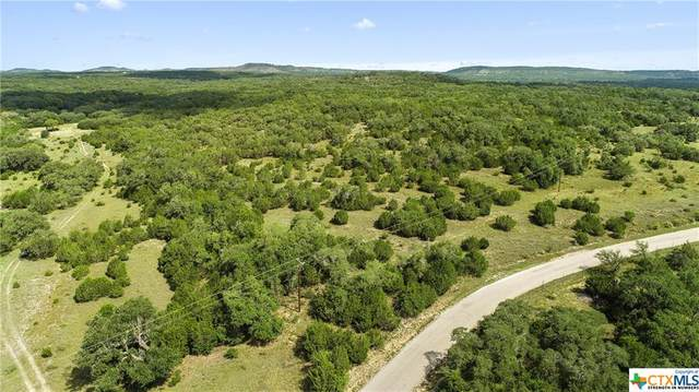 TBD Red Corral Ranch Road, Wimberley, TX 78676 (MLS #423599) :: The Myles Group