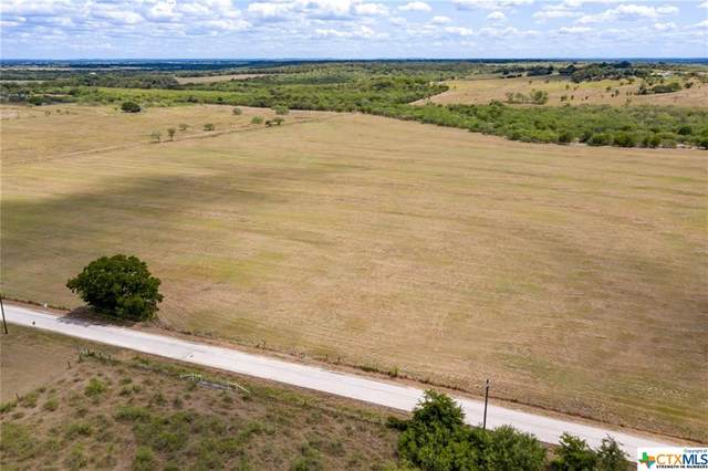 105 Black Ankle Road, Lockhart, TX 78644 (MLS #423621) :: RE/MAX Family