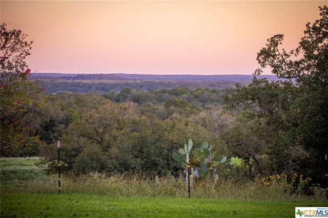 22317 State Highway 80 Highway, Gonzales, TX 78629 (MLS #423725) :: Brautigan Realty