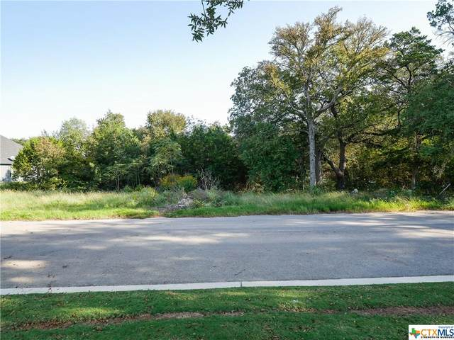 13002 Pigeon Forge Drive, Belton, TX 76513 (MLS #423757) :: The Zaplac Group
