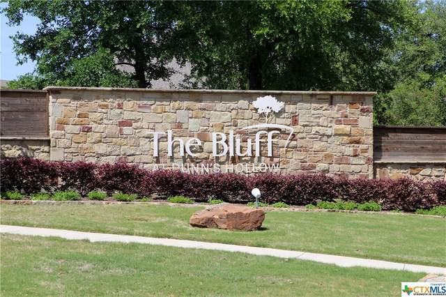 2459 Bluff Circle, Belton, TX 76513 (MLS #423775) :: The Real Estate Home Team