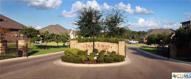 1916 Friars Grove Drive, Temple, TX 76502 (MLS #423791) :: Kopecky Group at RE/MAX Land & Homes