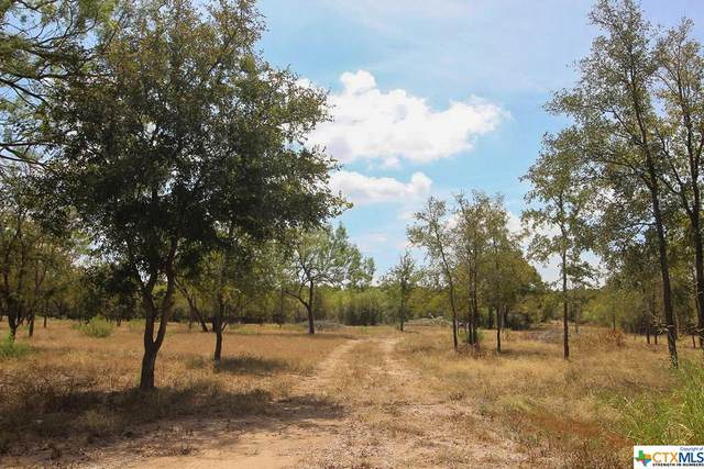 221 Burdette Wells Road, Lockhart, TX 78644 (MLS #423834) :: RE/MAX Family