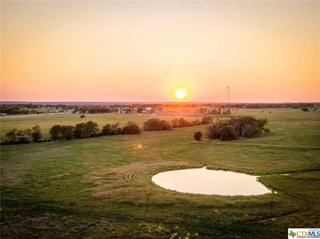 6601 Mother Neff Parkway, McGregor, TX 76557 (MLS #423861) :: The Zaplac Group