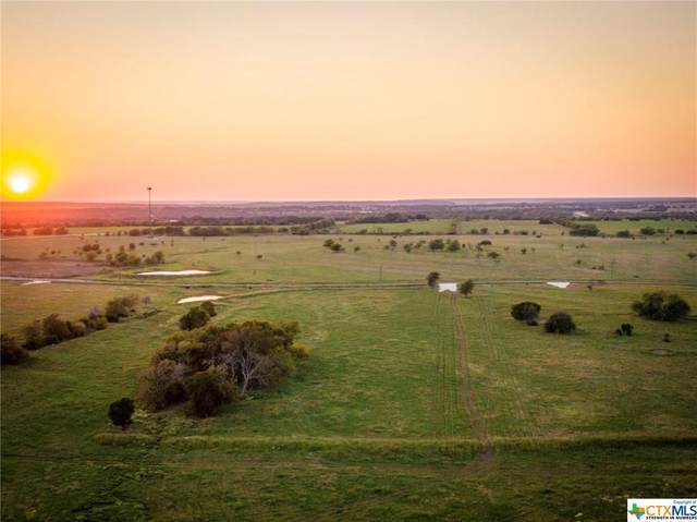 6605 Mother Neff Parkway, McGregor, TX 76557 (MLS #423862) :: The Zaplac Group
