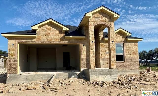 6011 Modena Drive, Temple, TX 76502 (MLS #423918) :: Kopecky Group at RE/MAX Land & Homes