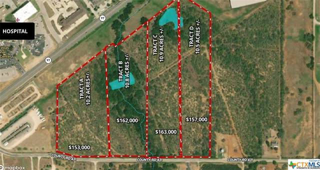 A County Road 431, Pleasanton, TX 78064 (MLS #423957) :: RE/MAX Family