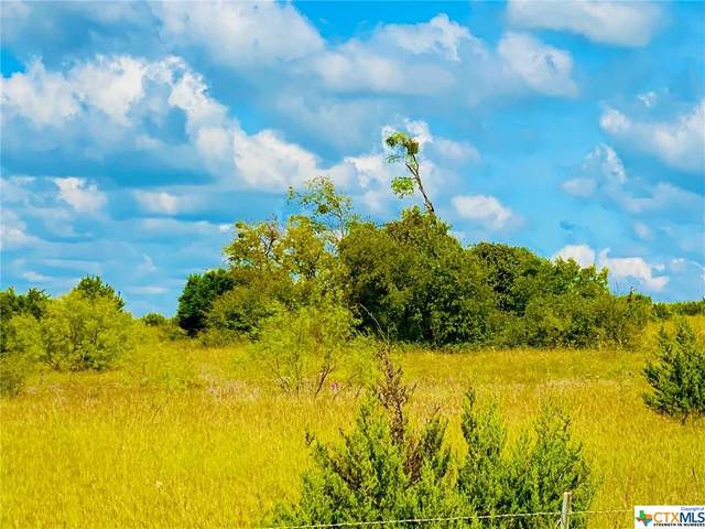 TBD Chitwood Road, Gatesville, TX 76528 (MLS #423976) :: RE/MAX Family
