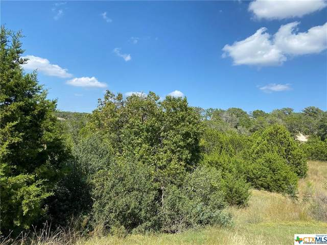 276 Prairie Tea Lane, Canyon Lake, TX 78133 (MLS #424168) :: Kopecky Group at RE/MAX Land & Homes
