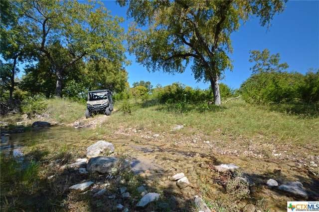 4685 County Road 2109, Lometa, TX 76853 (MLS #424197) :: RE/MAX Family