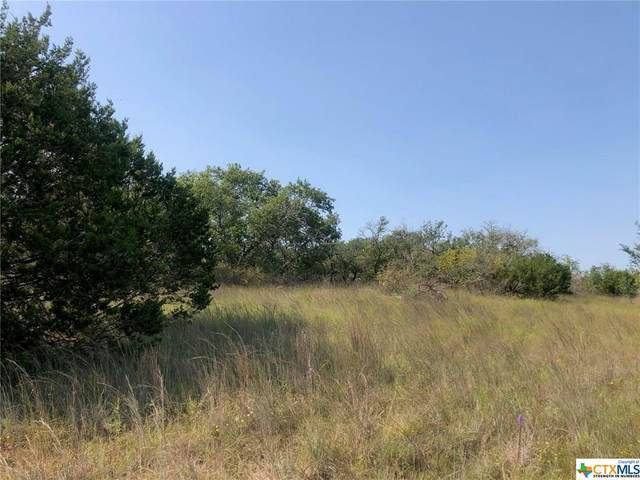 18006 Ranch Road 103, Kempner, TX 76539 (MLS #424260) :: Brautigan Realty