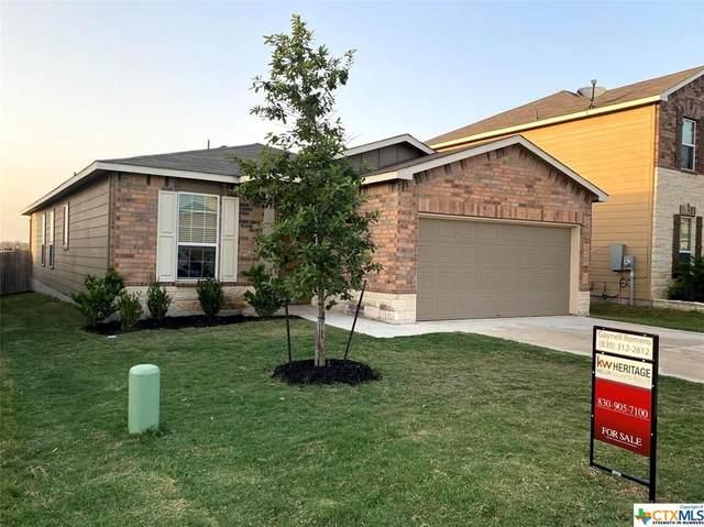 162 Texas Thistle, New Braunfels, TX 78130 (MLS #424300) :: Brautigan Realty