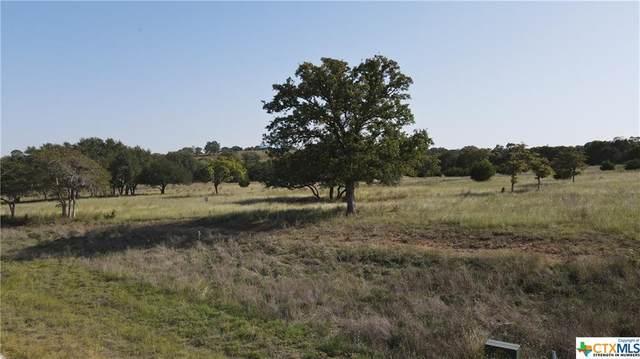 60 Thriving Oak Drive, Fredericksburg, TX 78624 (MLS #424366) :: Vista Real Estate