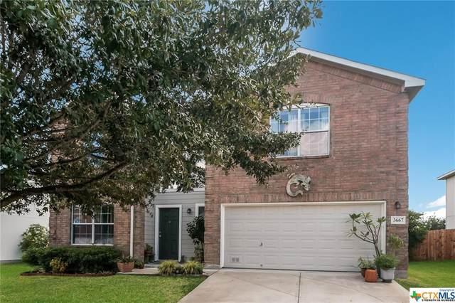 3667 Archer Boulevard, New Braunfels, TX 78132 (MLS #424393) :: RE/MAX Family