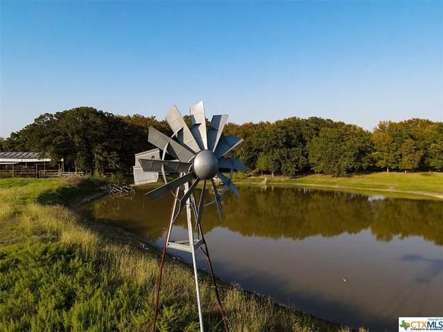 3285 County Road 102, Jonesboro, TX 76538 (MLS #424413) :: Kopecky Group at RE/MAX Land & Homes
