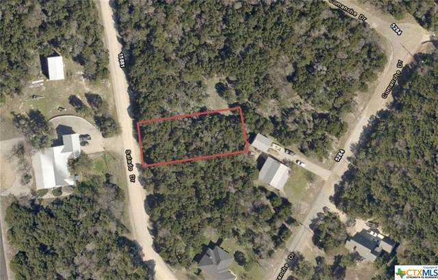 15862 Salado Drive, Temple, TX 76502 (MLS #424565) :: Brautigan Realty