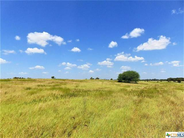 0000 County Rd 364 / County Rd 355, Shiner, TX 77984 (MLS #424568) :: RE/MAX Family