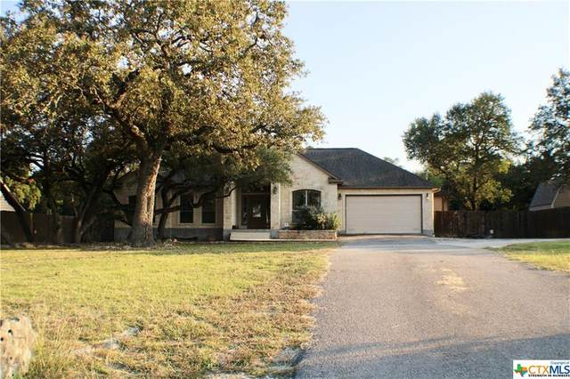 1330 Dragon Fly, Spring Branch, TX 78070 (MLS #424580) :: The Myles Group