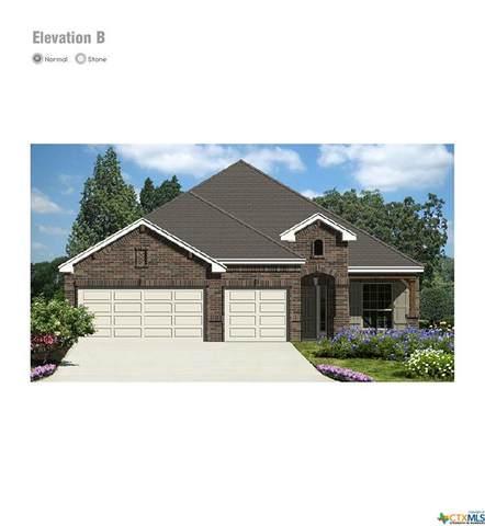 3630 Clear Cloud Drive, New Braunfels, TX 78130 (MLS #424584) :: RE/MAX Family