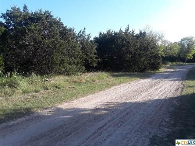 136 Bramble Bush Drive, OTHER, TX 76513 (#424637) :: First Texas Brokerage Company