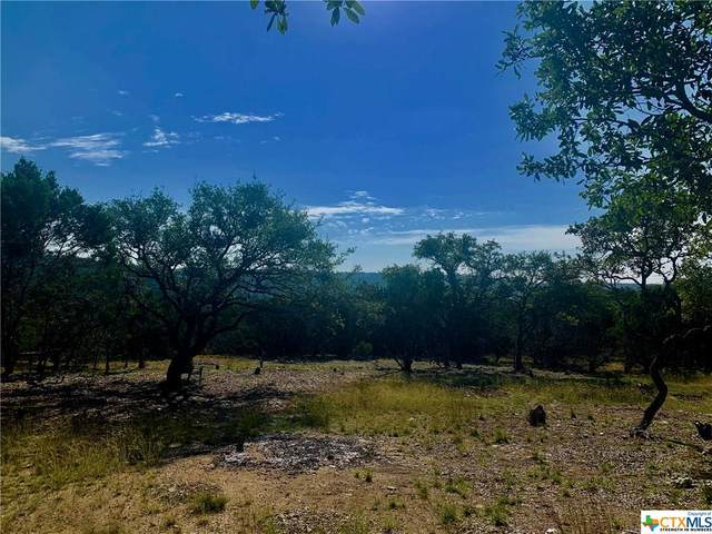 0 Eagle Point Drive, Fischer, TX 78623 (MLS #424645) :: Kopecky Group at RE/MAX Land & Homes