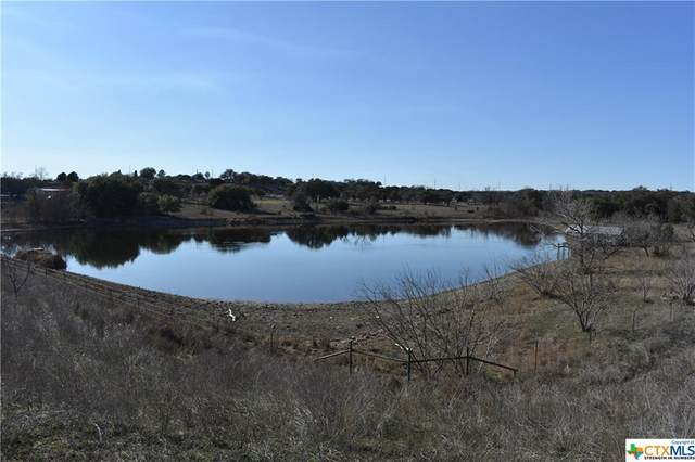 46.3 Acres County Road 1045, Lampasas, TX 76522 (MLS #424662) :: The Myles Group