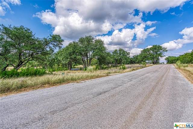 31047 Windmill Lane, Bulverde, TX 78163 (MLS #424734) :: The Myles Group