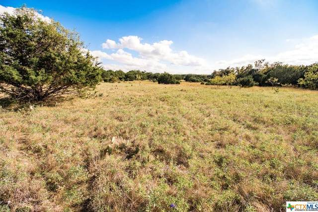 0 Big Divide Rd, Copperas Cove, TX 76522 (MLS #424819) :: The Zaplac Group