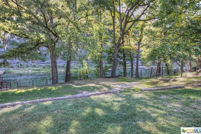 8560 River Road, New Braunfels, TX 78132 (MLS #424907) :: The Myles Group