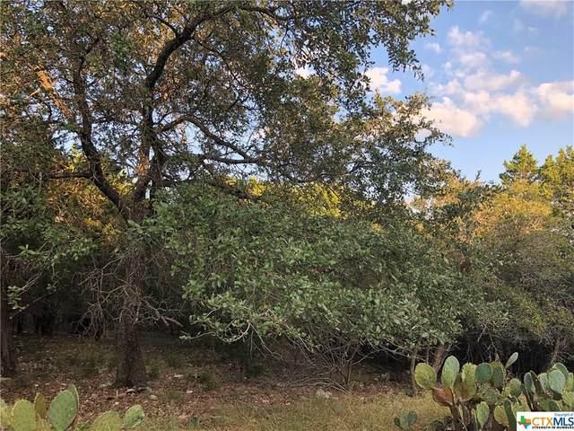 8374 Mountain Drive, Salado, TX 76571 (MLS #425032) :: Brautigan Realty