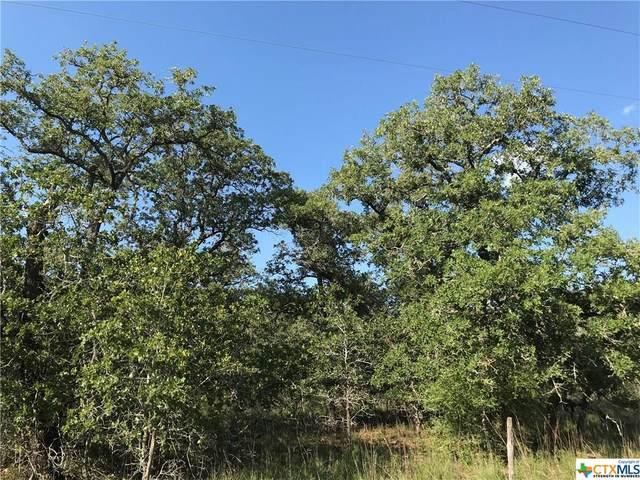194 Turkey Tree Trail Road, Seguin, TX 78155 (MLS #425106) :: The Real Estate Home Team