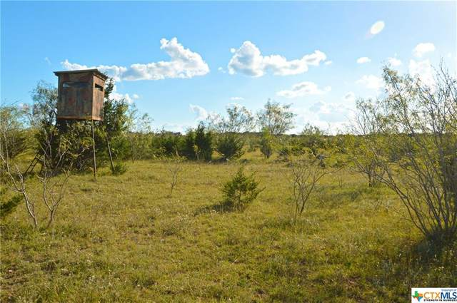 0 Cr 101, Lampasas, TX 76550 (MLS #425128) :: Brautigan Realty