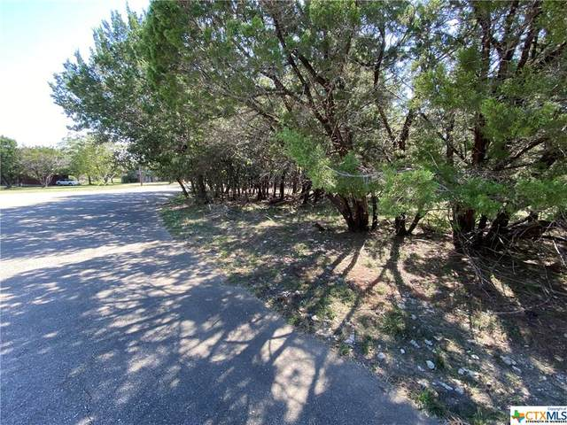 2220 Tye Valley Road, Harker Heights, TX 76548 (MLS #425163) :: Vista Real Estate