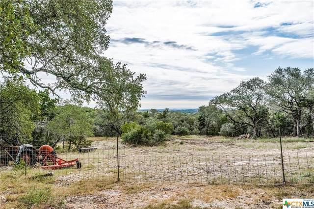 409 Pioneer Trail, San Marcos, TX 78666 (MLS #425294) :: Brautigan Realty
