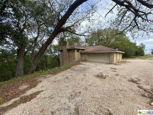 10002 Hartrick Bluff Road, Temple, TX 76502 (MLS #425400) :: The Zaplac Group
